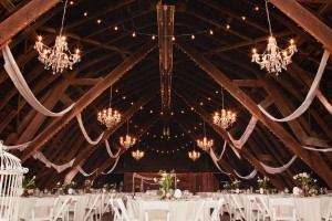 DreamGroup-Productions_vancouver-wedding-planner_Saar-Banks-Farm-20